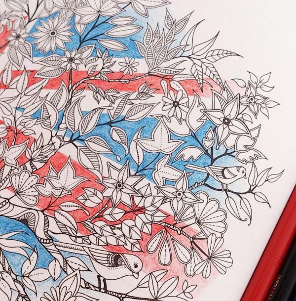 『ヒミツの花園』UJ (9)