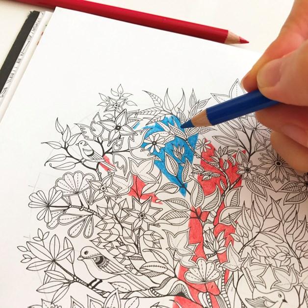 『ヒミツの花園』UJ (1)