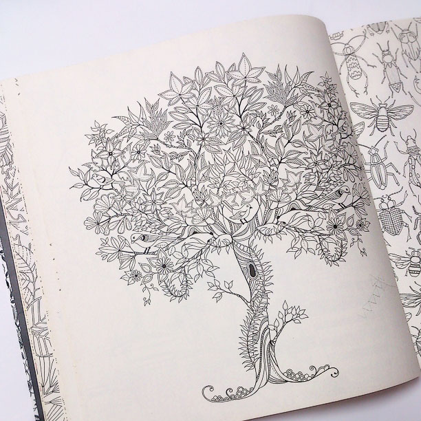 『ヒミツの花園』UJ (5)