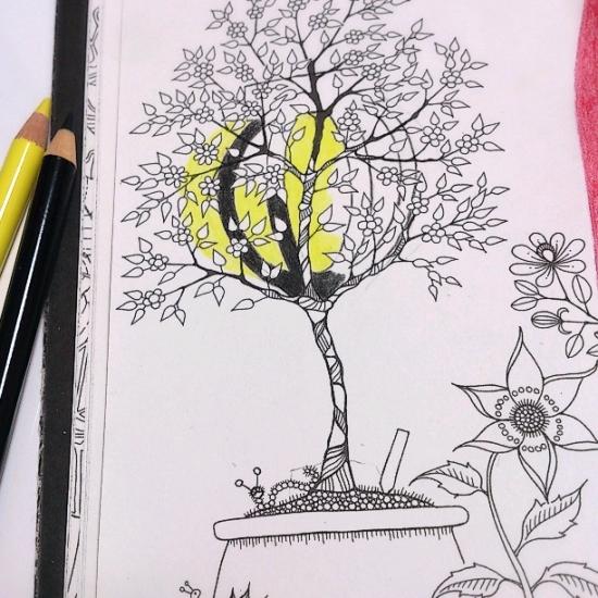 『ひみつの花園』ひな祭り2 (12)