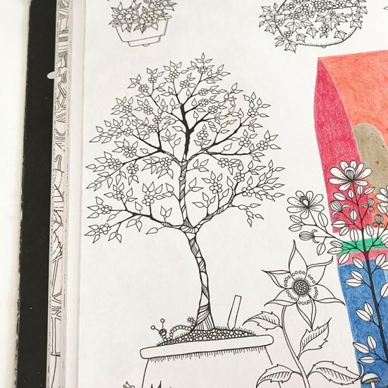『ひみつの花園』ひな祭り2 (3)