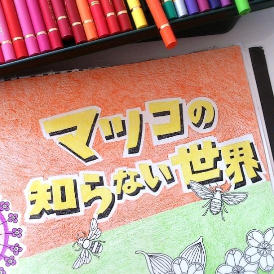 『ひみつの花園』マツコ (8)